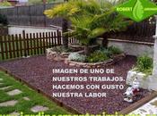 mejor elección tipo grava para decorar jardín