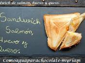 rica sandwichera!! sandwich salmón, huevo queso.