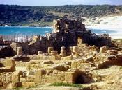 Tarifa-Las Ruinas Baelo Claudia