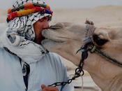 virus MERS puede transmitirse camellos humanos
