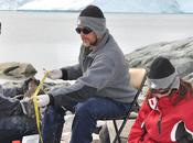 Reportan primer virus influenza aviar pingüinos antárticos