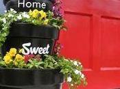 Ideas para hacer mini jardín