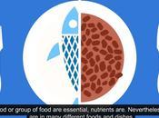 ¿Dieta equilibrada dieta saludable sinónimos?