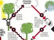 smartphone viejo puede salvar bosques tala ilegal