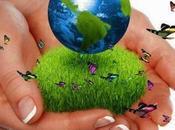 valor económico medio ambiente.