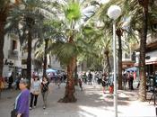 Gràcia, comerciantes organizan tiendas calle, próximo mayo...15-05-2014...!!!