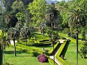 Resolución concurso fotografía jardinera formajardin