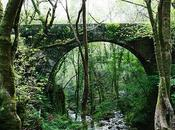 Pontedeume Parque Natural Fragas Eume