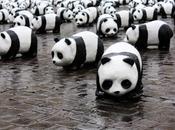 Google Panda está aquí