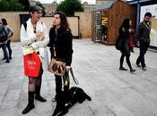 Paisajes Gijón TBM, excusa para seguir movimiento