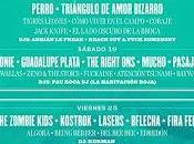 Cartel completo Festival Tomavistas 2014