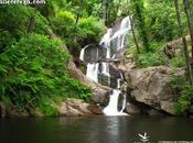 junio: mundial Medio Ambiente