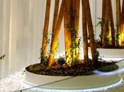 Especial decoración paisajismo oficinas edificios coorporativos