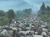 libro indispensable sobre doble genicido Ruanda