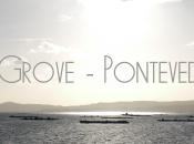 Grove Galicia
