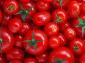 Cómo podar tomates (II)