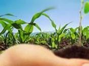 necesidad economía sustentable para salir subdesarrollo.