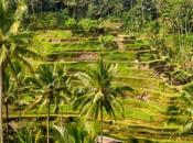 días Bali