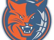 Previa Temporada '10-11: Charlotte Bobcats