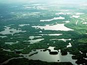 Jornada sobre restauración ecológica humedales.