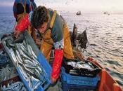 Gore lima ratifica apoyo pescadores artesanales…