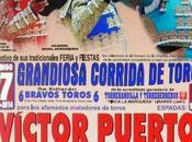 Cartel Corrida Toros motivo Feria Fiestas Almadén 2014