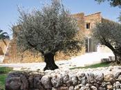 casa Fabrizzio Plessi