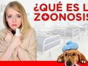 Concepto zoonosis ¿Que zoonosis?