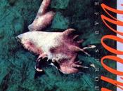 Prefab Sprout 10): Swoon