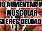 ¿Como aumentar masa muscular delgado?