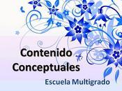 Contenidos Conceptuales Escuelas Multigrado