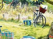Cómo organizar picnic