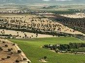 "PRESENTAMOS ""BODEGAS TIERRAS ORGAZ"" (Vino Tierra Castilla)"