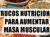 Trucos nutricionales para aumentar masa muscular.