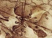Historia Cerebro Nacimiento Neurociencia