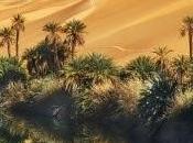 Oasis al-Maá, Libia