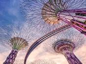Super árboles jardines bahía Singapur