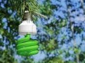 Bioenergia??