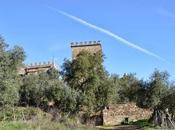 Castillo Beltraneja