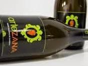 Artezana: Vino Zanahoria Valladolid