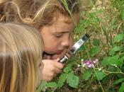 Explorando fauna flora ribera