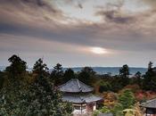 Visita rápida Nara