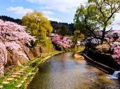 Takayama: Japón Neones