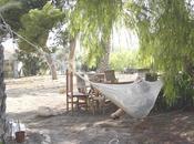 campamento lilu