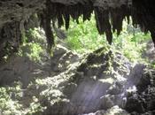 Cuevas Camuy, Puerto Rico