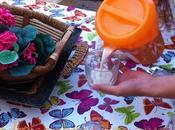 Receta merienda ideal para niños: horchata chufas casera