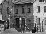 Auschwitz cómo complicado escribir sobre infierno