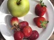 alimentos contaminados limpios pesticidas