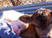 Enseñe hijos amar respetar todos animales