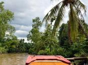 Navegando Delta Mekong: Frutas exóticas, Mercado flotante Escenarios película